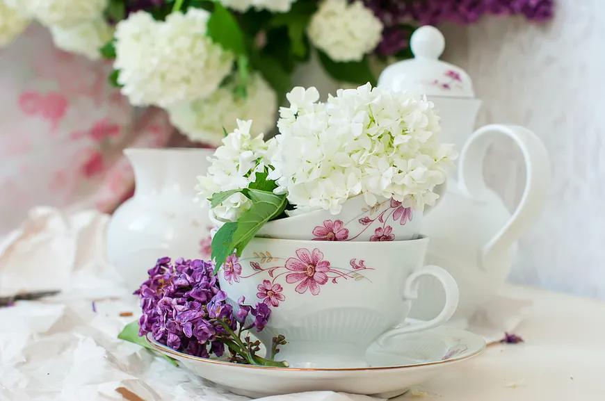 Majowe Kwiaty Wlasciwosci Lecznicze Kwiatow Bzu Wp Abczdrowie Tea Cups Glassware Tableware