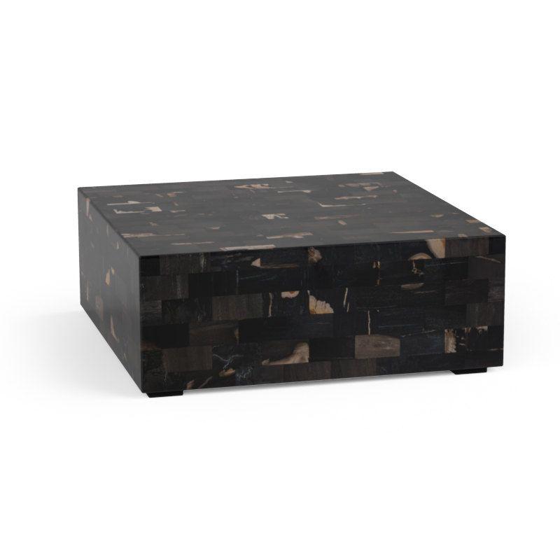 Midnight coffee table petrified wood coffee table