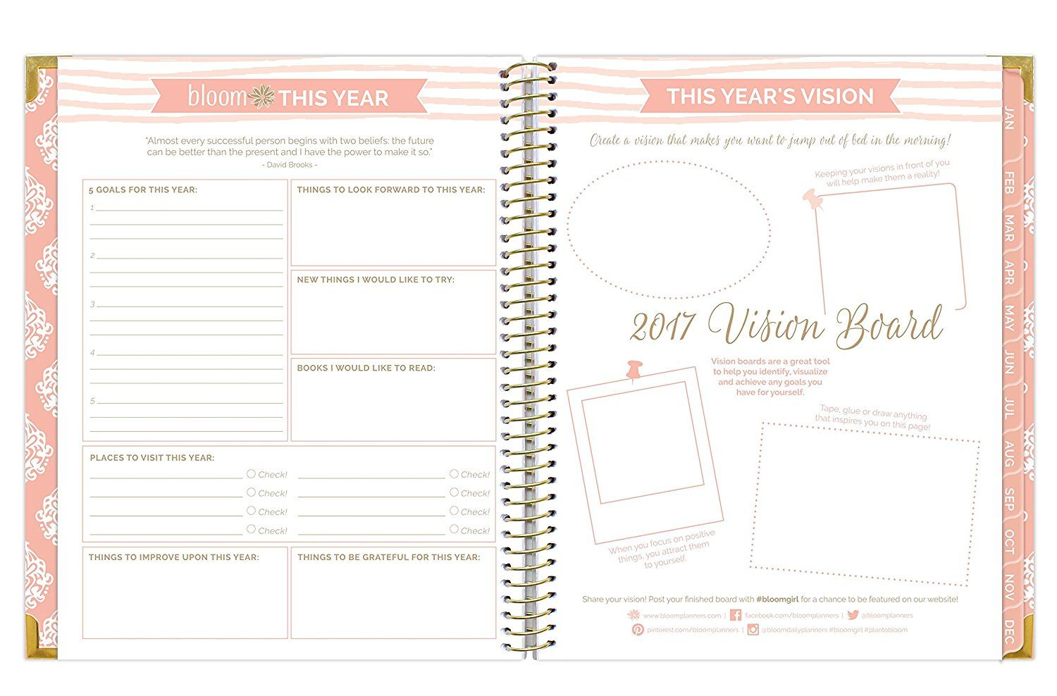 Bloom Daily Planners 2017 Calendar Year Vision Planner January