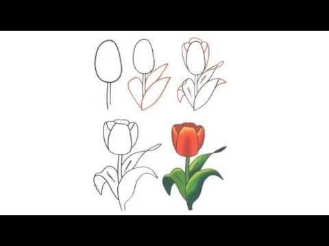 Como Dibujar Flores Paso A Paso Youtube Drawing Tutorials