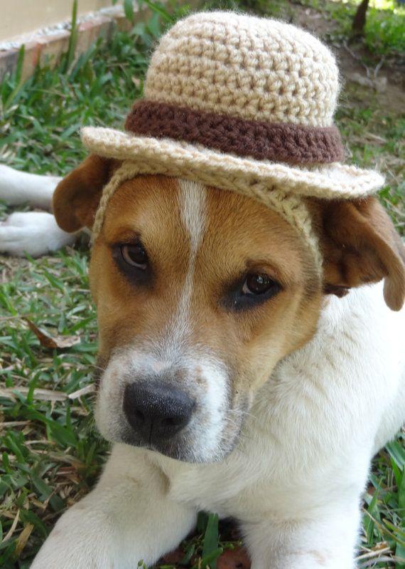 Bowler Hat For Dogs Dog Bowler Hat Dog Sun Hat Sun Hat For Dogs Dog Hat Hat For Dogs Dog Costume The Hot Dog 39 S Sun Ha Dog Costume Dog Hat