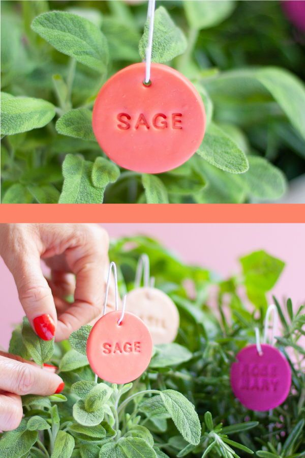 Herb Garden Plant Labels DIY is part of Plant labels diy, Garden markers diy, Plant labels, Garden labels, Plant markers diy, Herb garden markers - Thinking of planting an herb garden  How about making your own herb garden plant labels  We'll show you how in this easytofollow tutorial