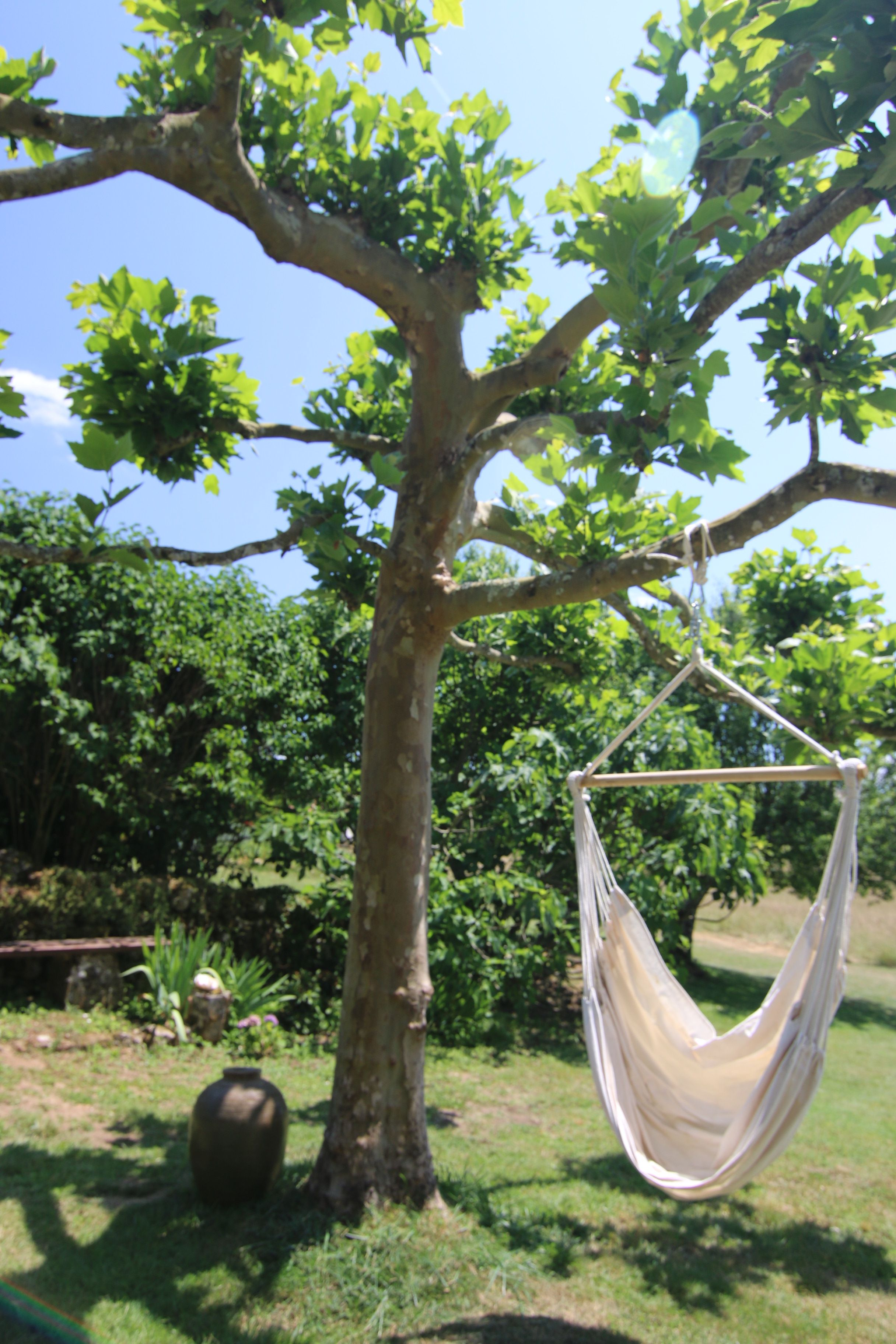 Hanging Yoga Chair Cushion Covers Ikea The Swing Is For Ultimate Relaxing
