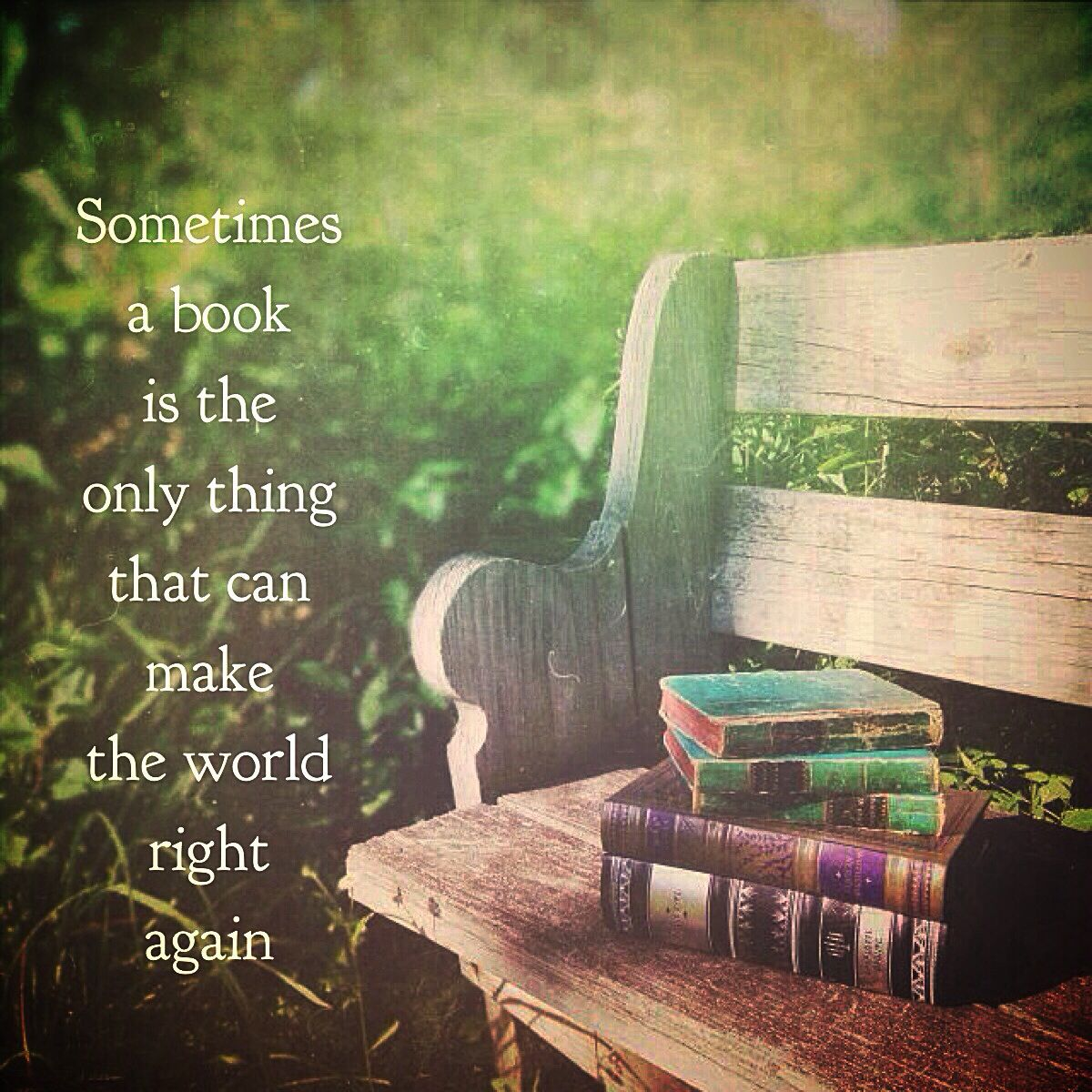 Sometimes a book is the only thing that can make the world right again.