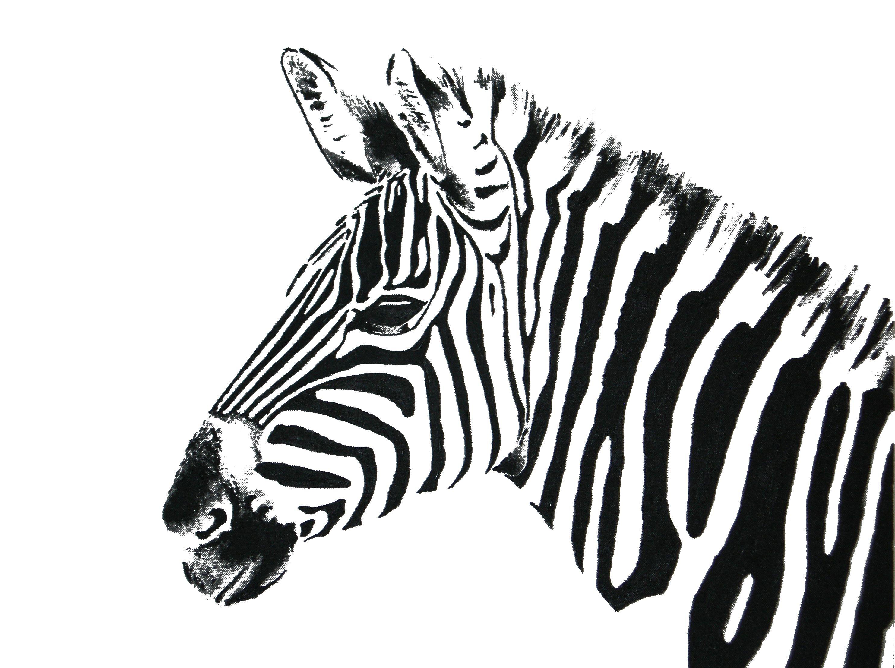 bilder zum ausmalen zebra  aglhk