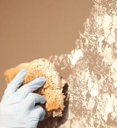 Home Decor Tips Savvy Interior WallsInterior Wall PaintingsGoogle