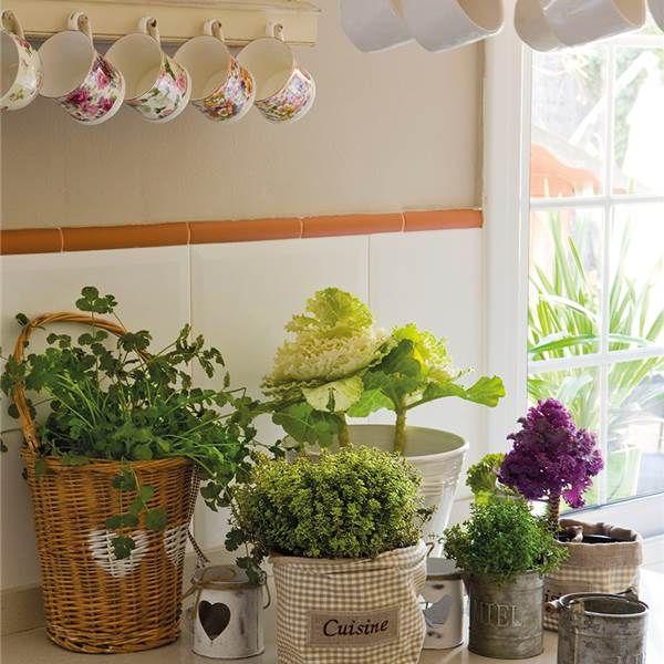 Mini huerto en la cocina decorar tu casa ayudar y plantas for Mini casas decoracion