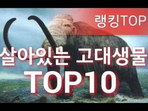 [랭킹TOP]살아있는 고대생물 TOP10