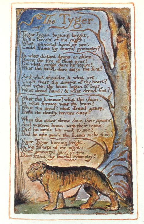 The Tyger written and illustrated by William Blake