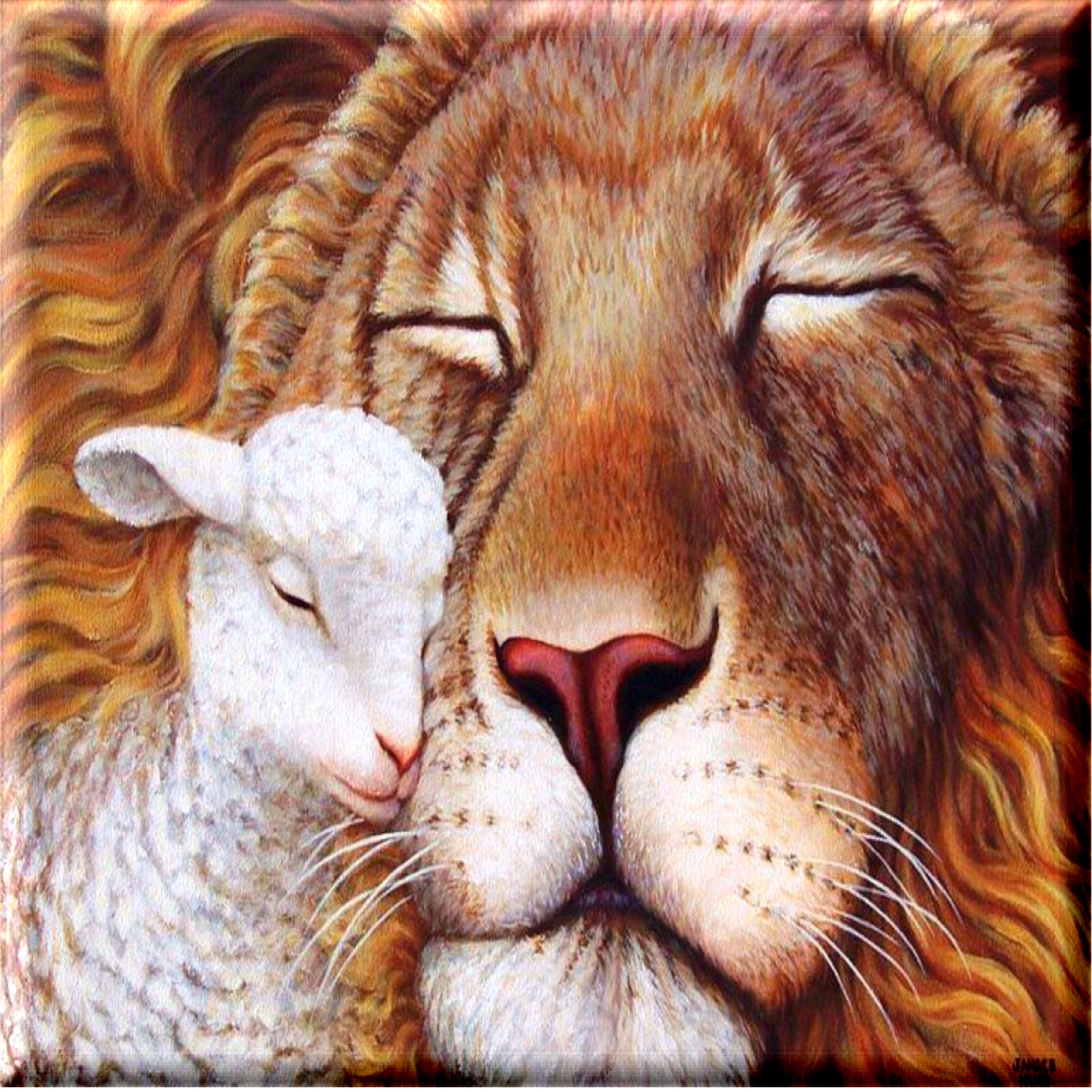 LION OF JUDAH   o   Pinterest   Cordero, León y Leones
