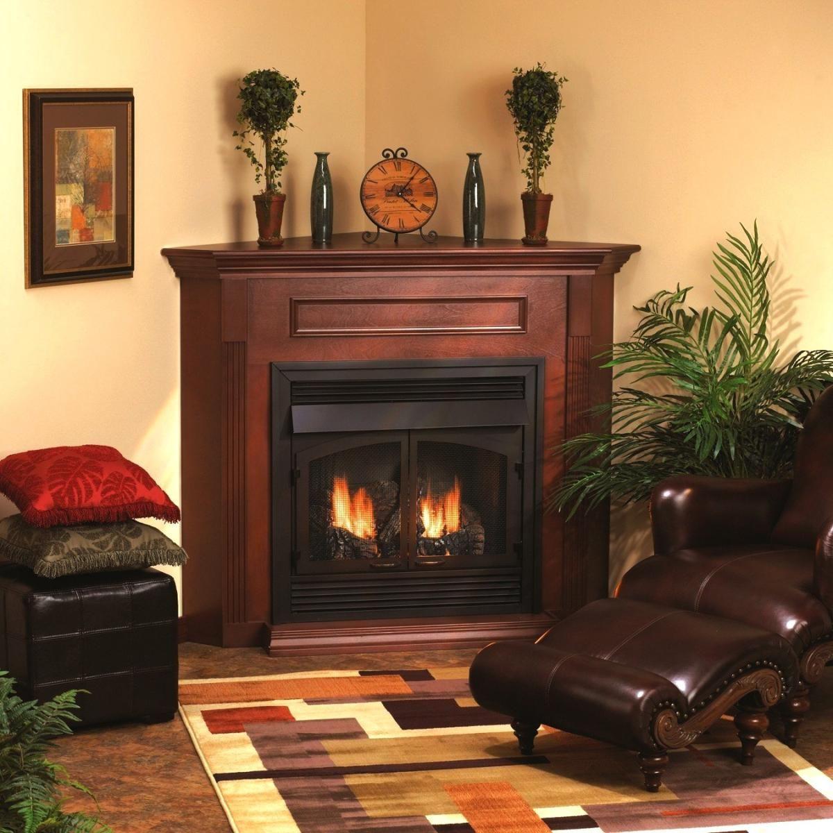 Propane Fireplaces Design Inspirations Corner Gas