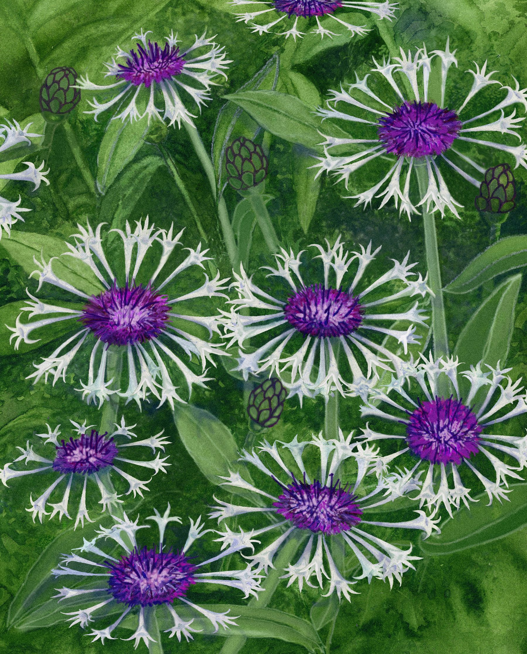 11 Perfect Perennials for Winter Interest in 2020 Fall