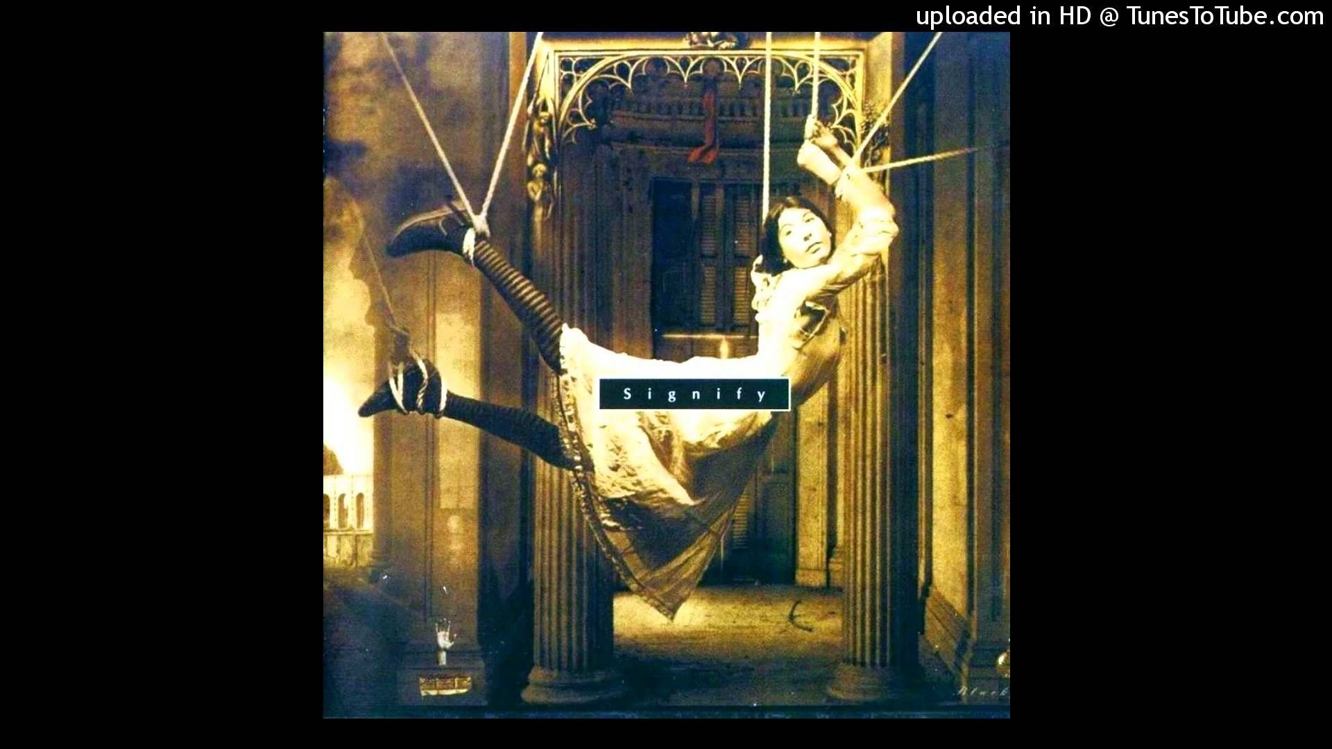 Porcupine Tree Bornlivedie 1996 My Favorite Bands Album