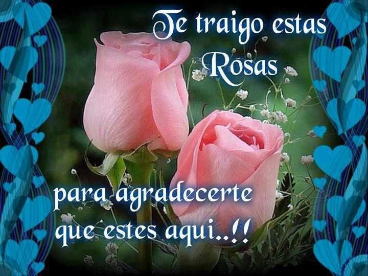 Image result for flores gratis para amigos