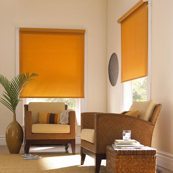 Roller Shades In Living Room With Fabric Matching Fascia Golden