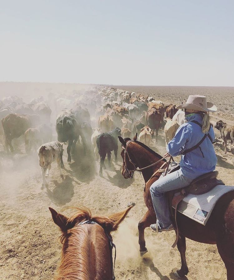 Pin by Kenziee Rose on Cowgirl Rodeo life, Western