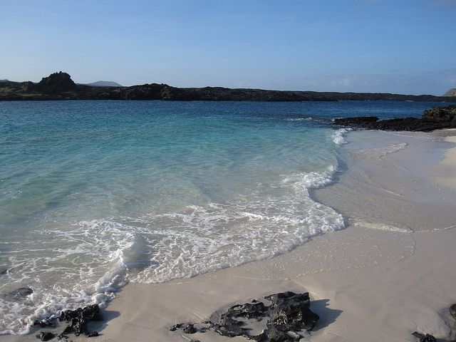 I really want to go to the Galapagos Islands.
