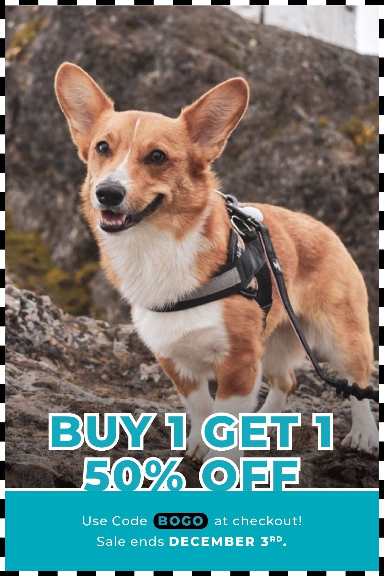 Every purchase helps a rescue dog in need buy two