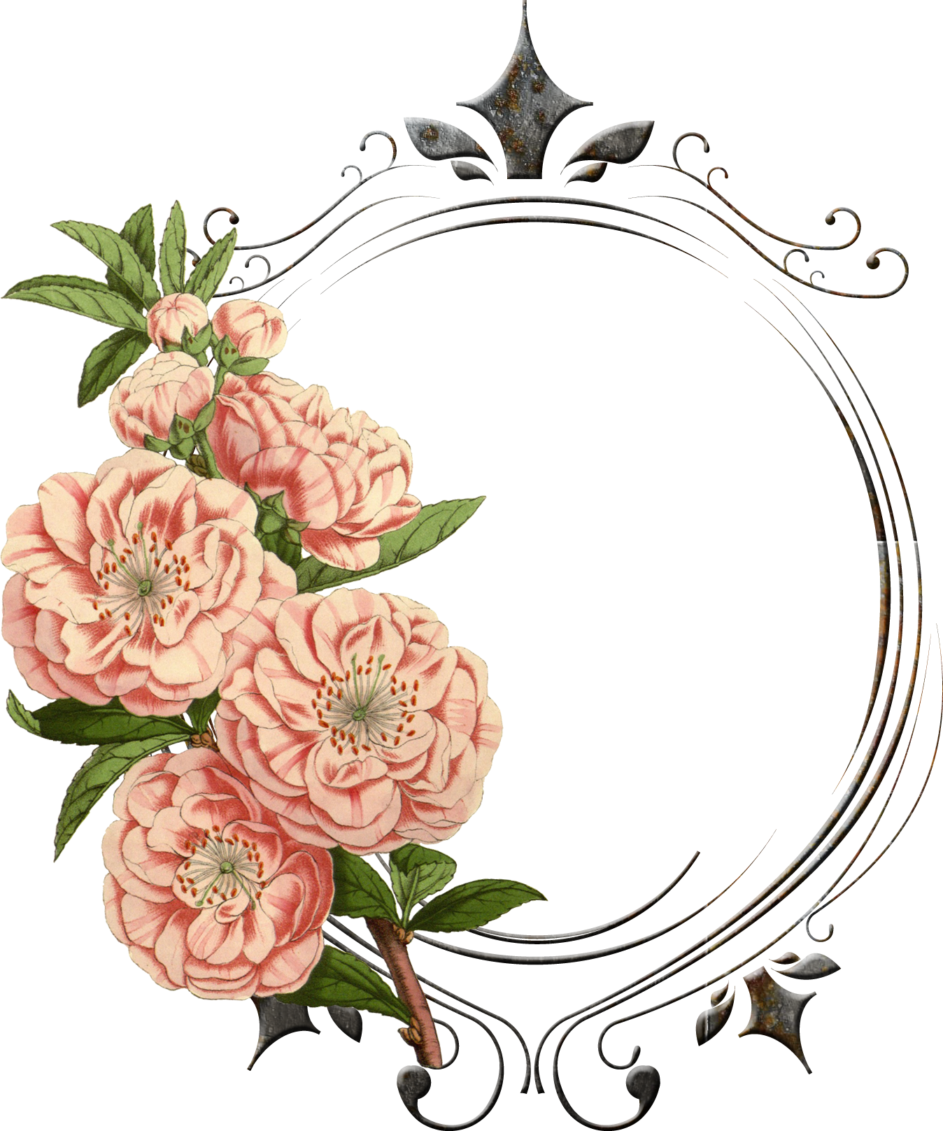 Antique Floral: Vintage Flower Png - Поиск в Google