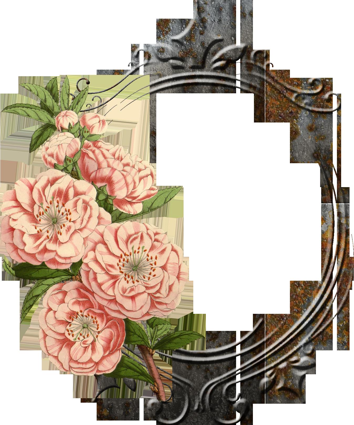vintage flower png - �...