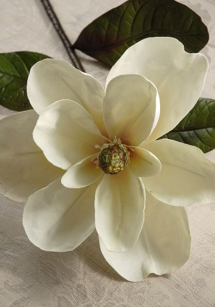 Silk Magnolias White Magnolias Wood Flowers Ceramic Flowers Magnolia Decor