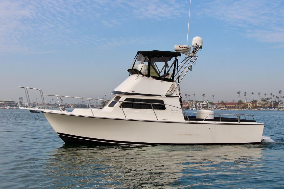 SOLD 2007 26' Blackman Billfisher for sale in Long Beach