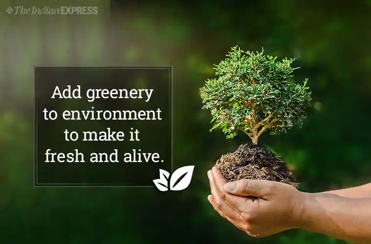 World Environment Day 2019 Theme, Slogans, Quotes, Poster