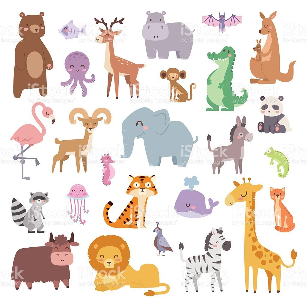 Cartoon Zoo Animals Big Set Wildlife Mammal Flat Vector Illustration Royalty Free Stock Vector Art Cartoon Zoo Animals Cartoon Animals Cute Animal Illustration