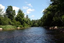 Tubing down the Ausable River in Mio--we did this!   I Love