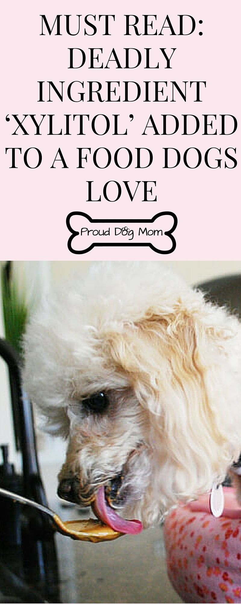 Must Read Deadly Ingredient Xylitol Added To A Food Dogs Love