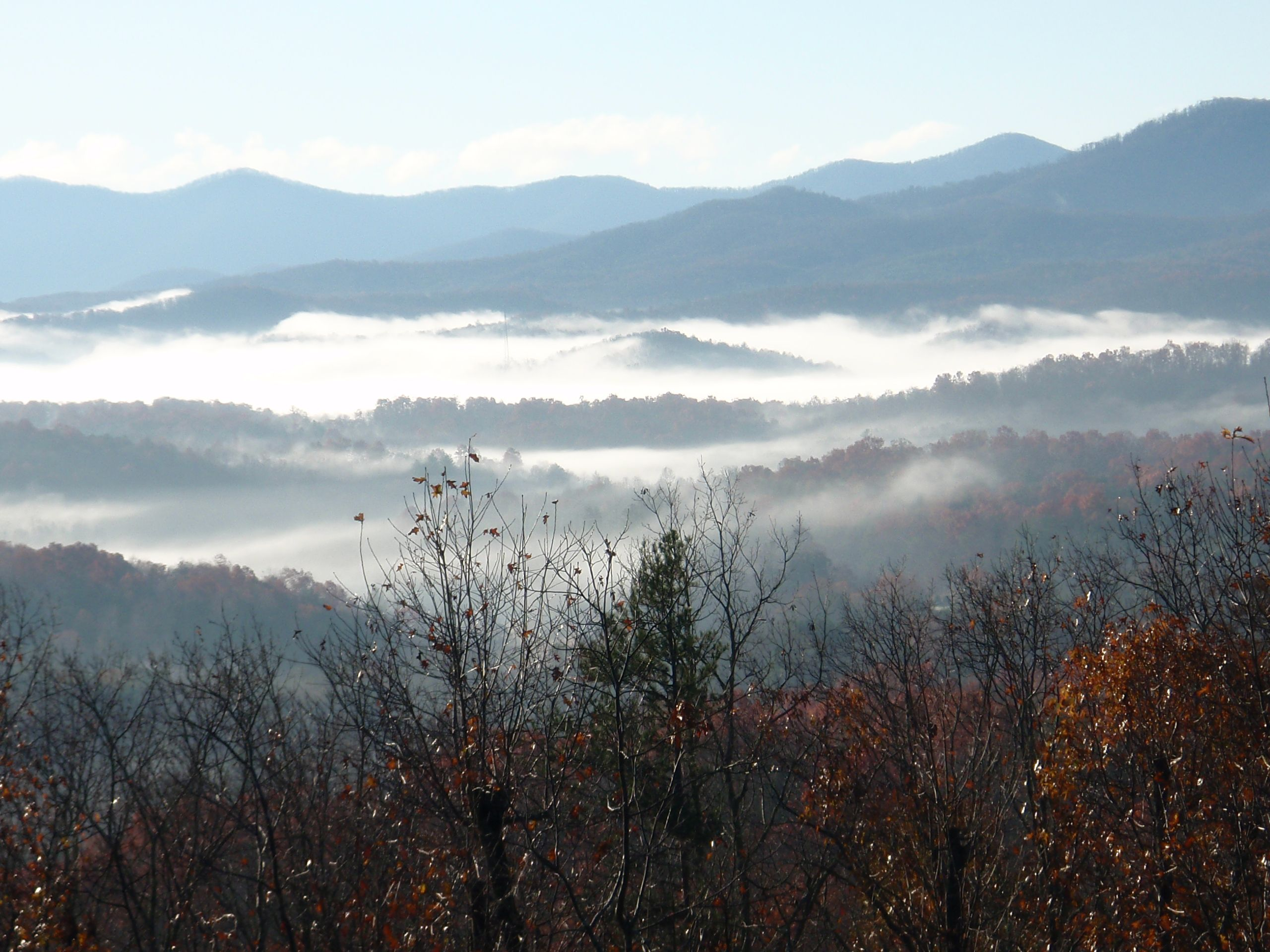 cabin stay places valley rentals creek pet foscoe in cabins to property ga pin dahlonega