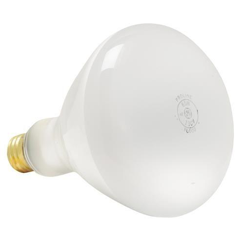 GE Proline Floodlight Light Bulb