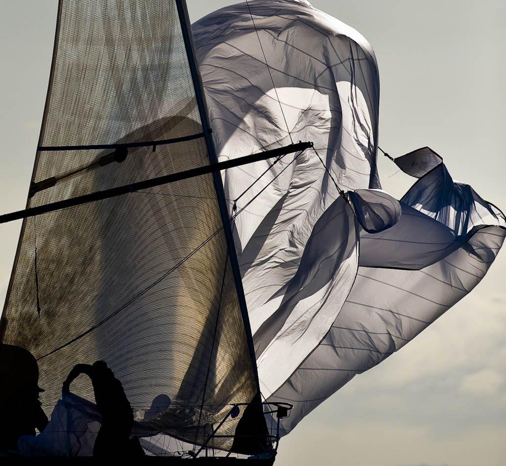 Wind  :: KURT ARRIGO
