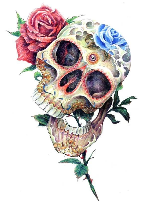 Love Drawing Art Flowers Skull Floral Anatomy Roses Sugar