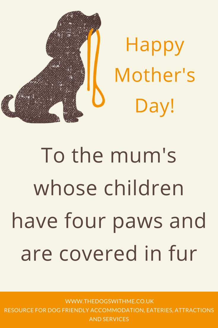 Happy Mother S Day To The Mum S Whose Children Have Four Paws And Are Covered In Fur Find Somewhere To T Dog Mothers Day Happy Mothers Day Mothers Day Quotes