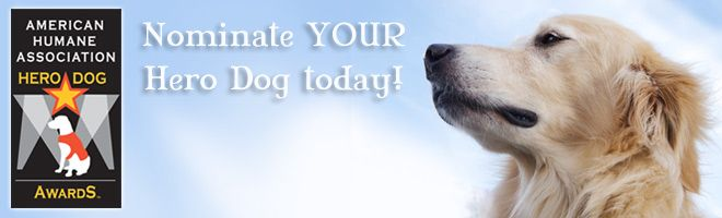 Only 6 days left to NOMINATE YOUR HERO DOG!