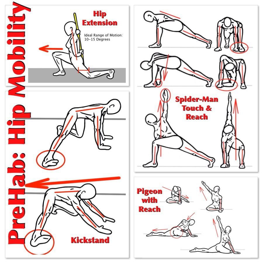 Set of exercises for developing the mobility of the whole body