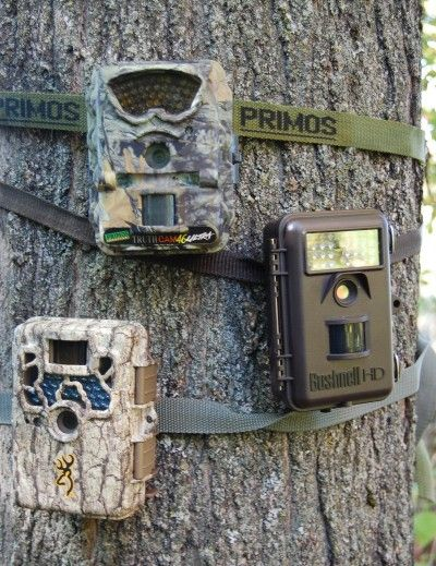 There are tons of great trail cameras available on the market ...
