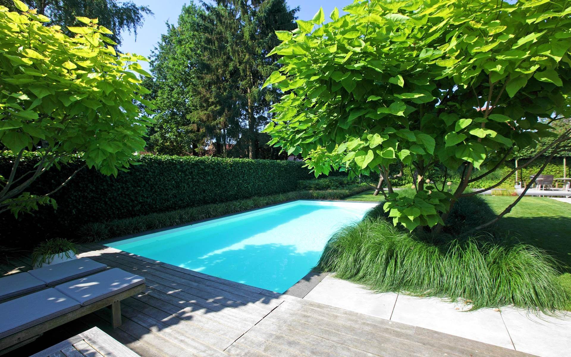 Moderne tuinarchitectuur in luxe tuin stoop tuinen tuin ideeën