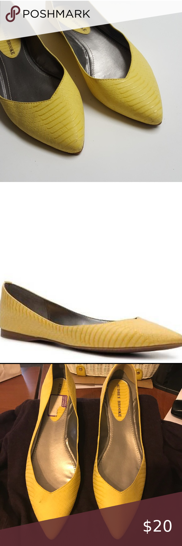DSW Audrey Brooke Pointy Toe Flat DSW's
