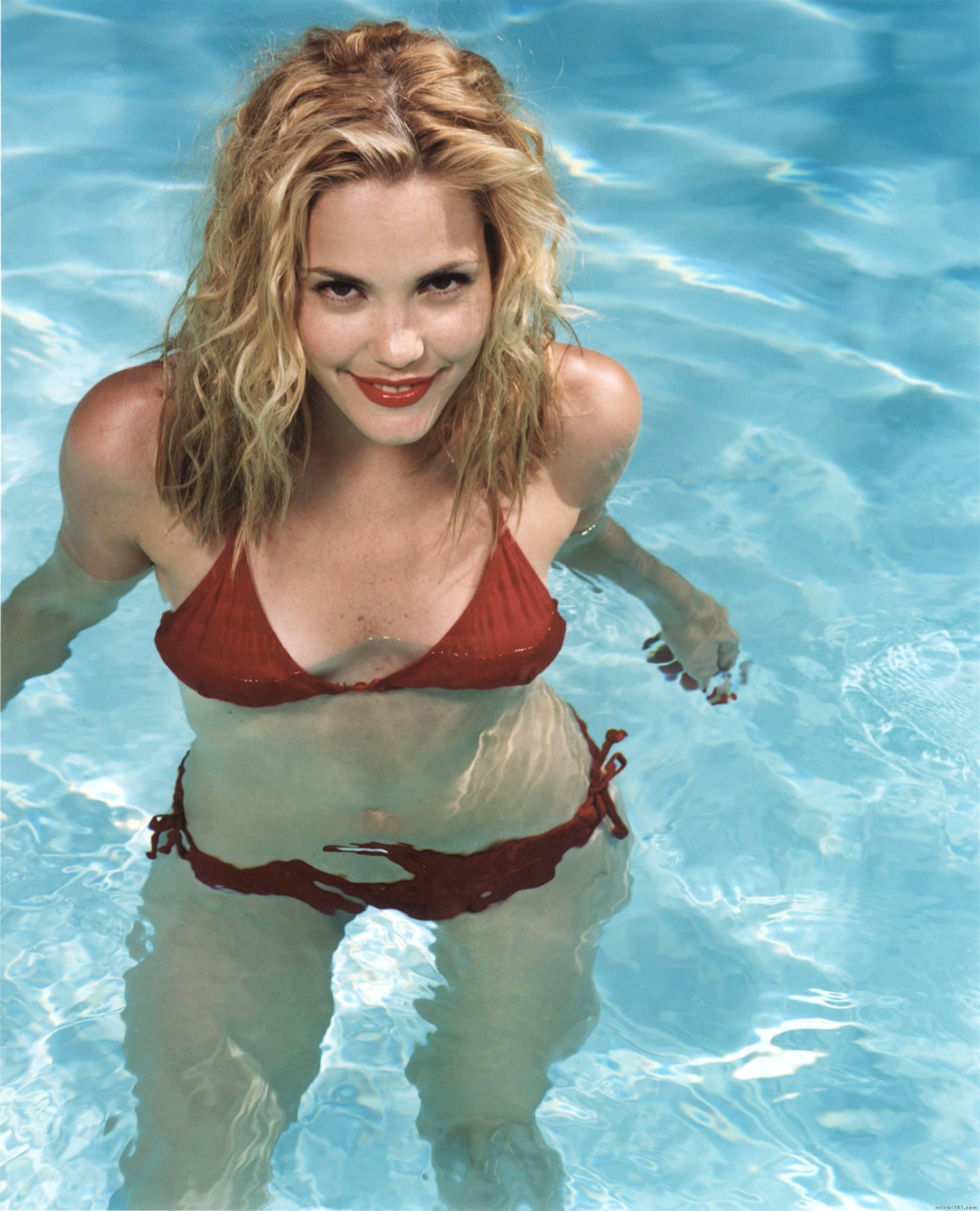 leslie bibb movie 43