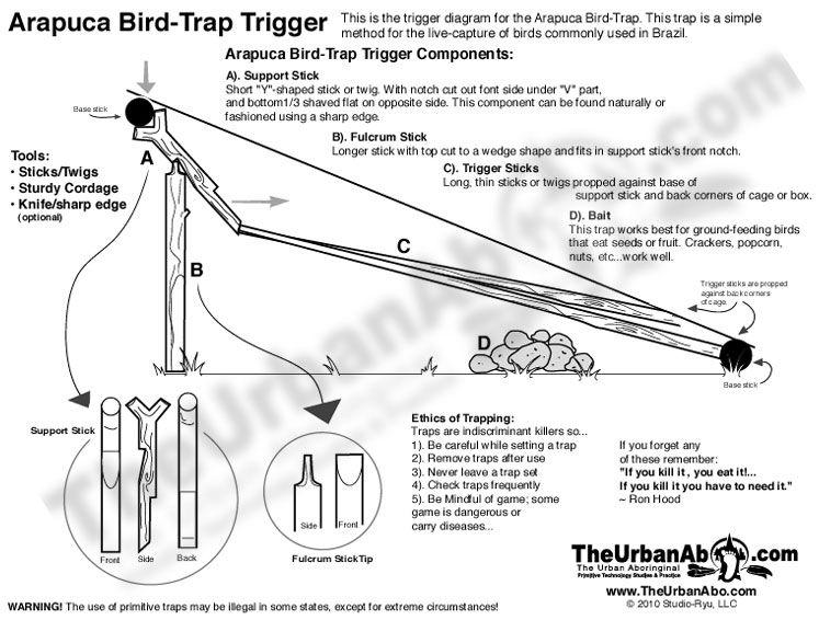 Arapuca bird trap trigger diagram bird trap survival