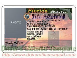 Drivers License Template   State Id    Caribbean