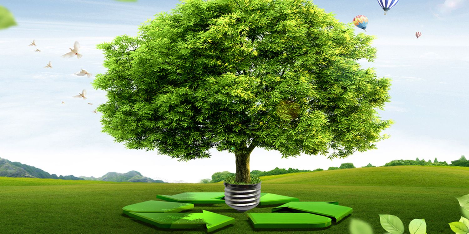 Study on Competitors and Environmental Management Practice
