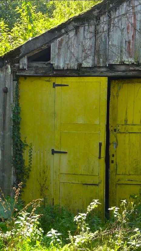 IMO, these doors aren't light/pale enough to be chartreuse, but the label is in the right direction.