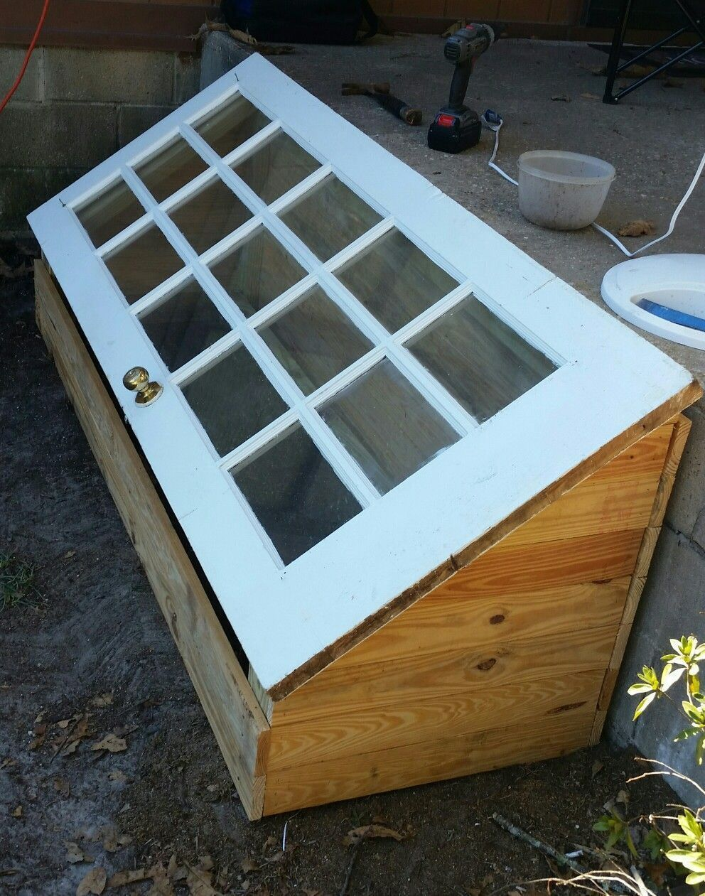 a green house made using a old 15 lore windowpane door. Black Bedroom Furniture Sets. Home Design Ideas