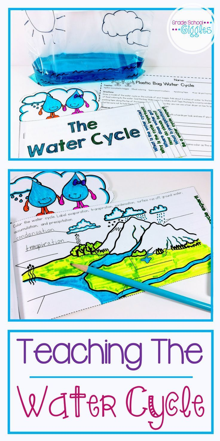 Water Cycle Activity And Mini Book