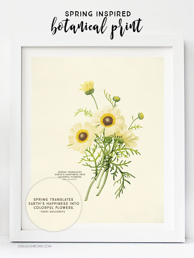 Vintage Botanical Prints are beautiful. Who doesn\'t love free ...