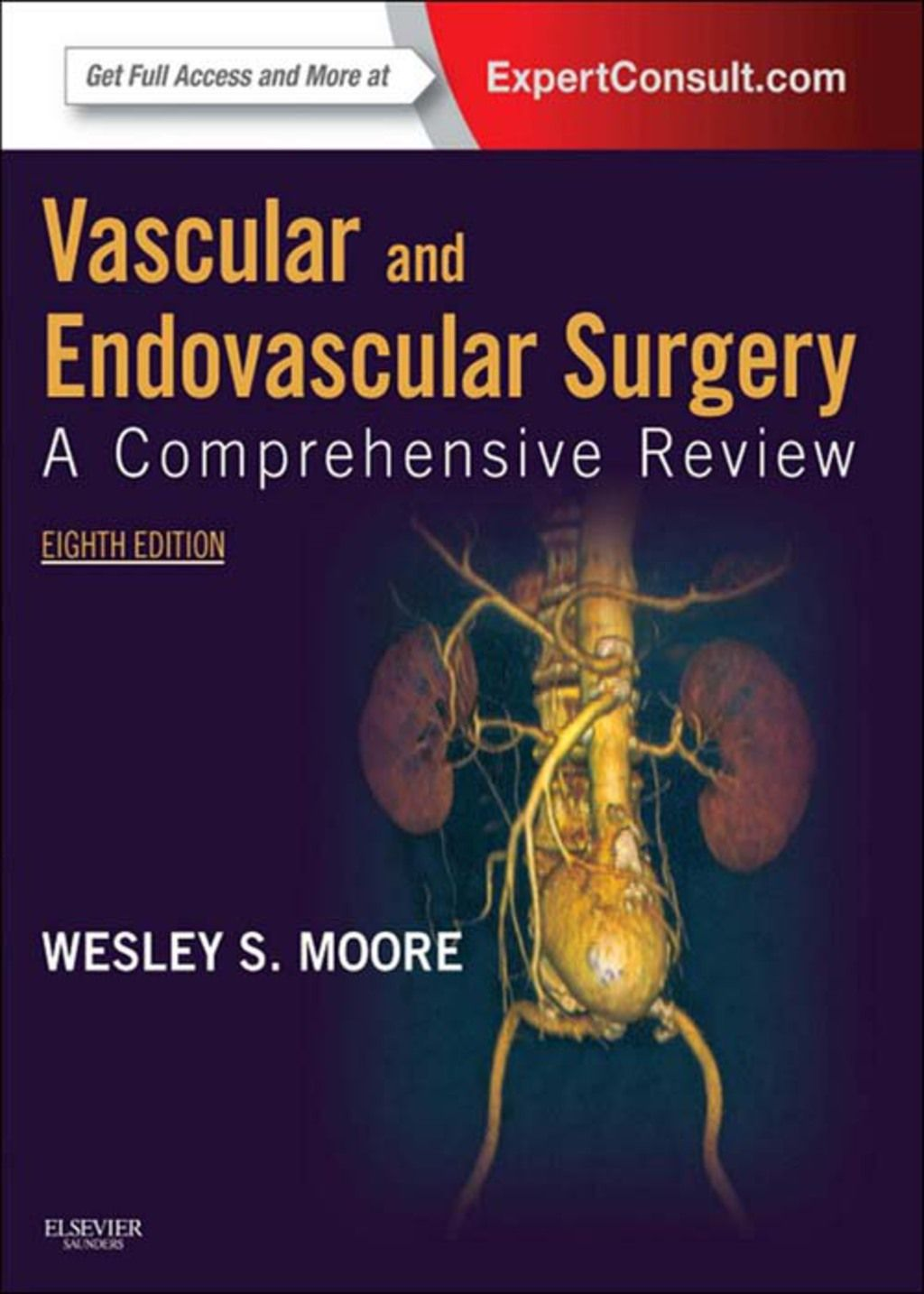 Vascular And Endovascular Surgery E Book Ebook Rental In