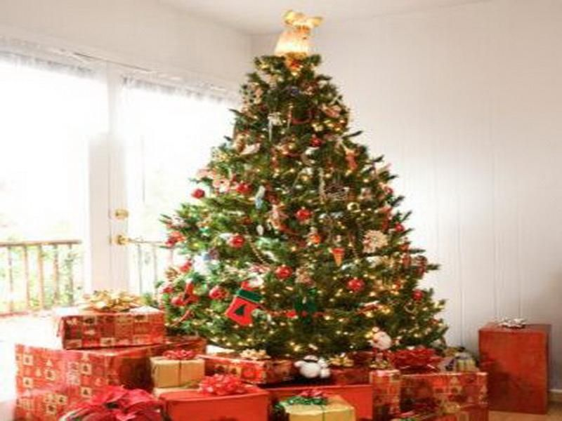 Best Christmas Tree Decorating Ideas Christmas Decorations